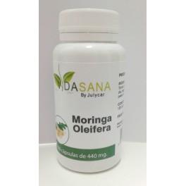 Moringa Bio oleifera VidaSanaByJulycar