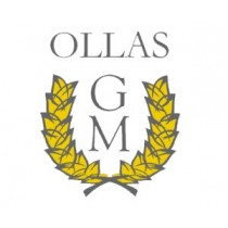 OLLAS PROGRAMABLES GM