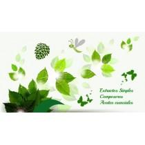 ACEITES ESENCIALES - COMPOSORES - EXTRACTOS SIMPLES